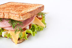 Sandwich on toasted bread Stock Photography