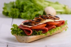 Sandwich with tomato cheese and champignon mushrooms royalty free stock photos