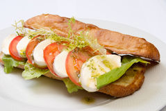 Sandwich with tomato and mozarella. On white dish Royalty Free Stock Image