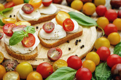 Sandwich with tomatoes, Basil and mozzarella. Toning. selective focus Royalty Free Stock Image