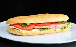 Sandwich with tomatoes and chicken breast Stock Photography