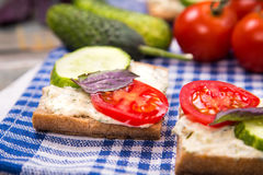 Sandwich with tomatoes Royalty Free Stock Images