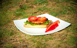 Sandwich with tomatoes on a white plate Stock Images