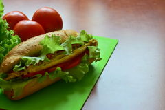 Sandwich with tomatos and salad. Sandwich with salad, tomatos, cheese, mustard and meat inside Royalty Free Stock Photo