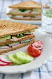 Sandwich with trout Stock Photos