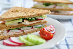 Sandwich with trout Stock Images