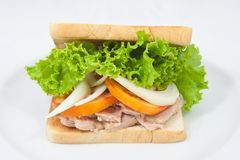 Sandwich tuna Stock Photo