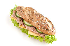 Sandwich with tuna Stock Photos