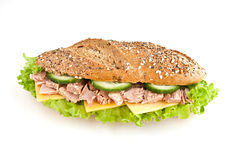Sandwich with tuna Stock Photography