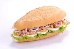 Sandwich with tuna and eggs Stock Image