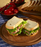 Sandwich with Turkey. Two Sandwich with Turkey and salade Stock Image
