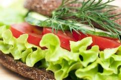 Sandwich végétal Photographie stock libre de droits