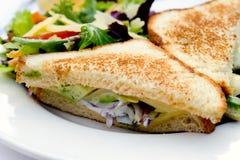 Sandwich végétarien Photographie stock libre de droits