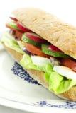 Sandwich végétarien de plaque Photographie stock libre de droits