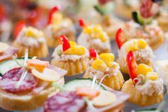 Sandwich van het caterings de koude vlees Royalty-vrije Stock Afbeeldingen