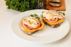 Vegan sandwiches Stock Photography