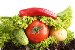Sandwich from vegetables. Royalty Free Stock Photos