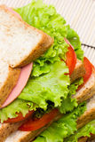 Sandwich with  vegetables and bacon  close up Stock Photo