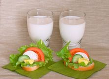 Sandwich with vegetables, cheese and egg, milk. Green salad,  on a green napkin Stock Images