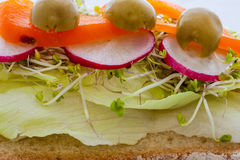 Sandwich with vegetables. Close up vegetables on bred Royalty Free Stock Photo