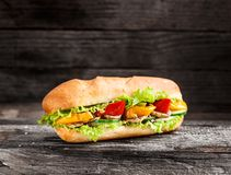 Sandwich with vegetables Stock Images