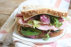 Sandwich vegetal ingredients with ham and cheese Stock Images