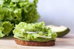 Sandwich vert Images libres de droits
