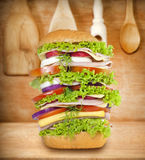 Sandwich very big Royalty Free Stock Images