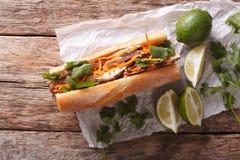 Sandwich vietnamien avec le plan rapproché de cilantro et de carotte horizonta photos libres de droits