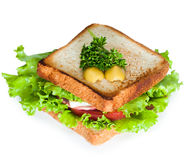 Sandwich on the white background. Studio shoot Royalty Free Stock Images