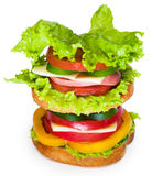 Sandwich on the white background. Studio shoot Royalty Free Stock Image