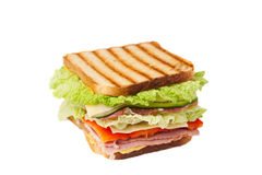 Sandwich on a white background Stock Image