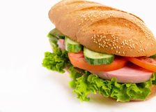 Sandwich on white Royalty Free Stock Image