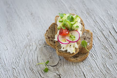 Sandwich with whole grain bread, cottage cheese, cucumber and radish Royalty Free Stock Photo