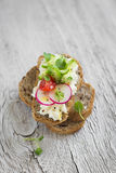 Sandwich with whole grain bread, cottage cheese, cucumber and radish Royalty Free Stock Photos