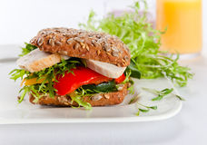 Sandwich With Grilled Vegetables And Chicken Stock Photography