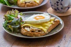 Sandwich in witte schotel op houten lijst Stock Afbeeldingen
