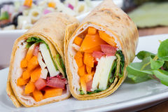 Sandwich wrap portion on plate Royalty Free Stock Image