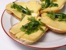 Sandwich yellow cheese Royalty Free Stock Images