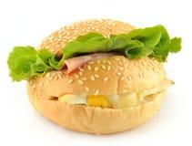 Sandwichbrot lizenzfreie stockfotos