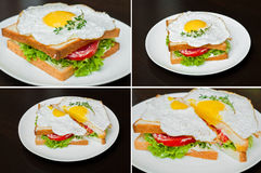 Sandwichcollage Royalty-vrije Stock Foto's