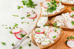Sandwiche mit Hüttenkäse stockfoto