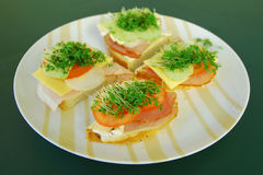 Sandwiches. On a green table and plate with butter, ham, onion, cheese, tomato and cress Royalty Free Stock Photo