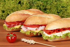 Sandwiches. Fresh sandwiches with ham, salami and smoked salmon Stock Photo