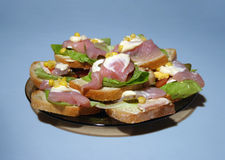 Sandwiches. A few sandwiches on a plate royalty free stock image