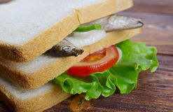 Sandwiches with anchovies Stock Images