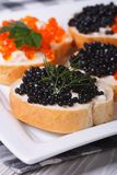 Sandwiches black and red caviar closeup. Royalty Free Stock Photo