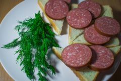 Sandwiches of bread triangular with meat red sausage on a white ceramic round plate decorated with fragrant and rich dill green. A few twigs and everything is Stock Image