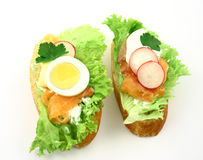 Sandwiches couple. Top view at couple of fresh salmon's sandwiches with colourful ingredients Royalty Free Stock Images