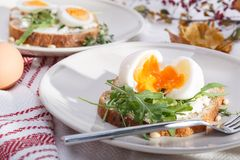 Sandwiches with eggs Royalty Free Stock Image